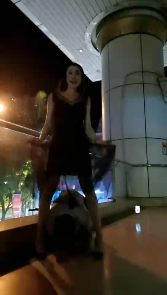 Weixi (outdoor McDonald's door adjustment dog